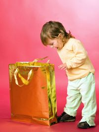 Wte-photogallery-new-sibling-toddler-bag