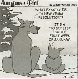Resolutions-angusandphil